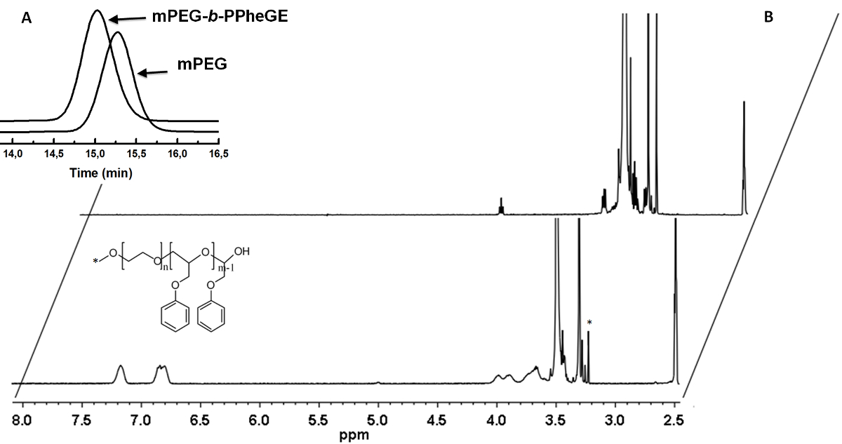 Anionic Polymerization of an Amphiphilic Copolymer for Preparation