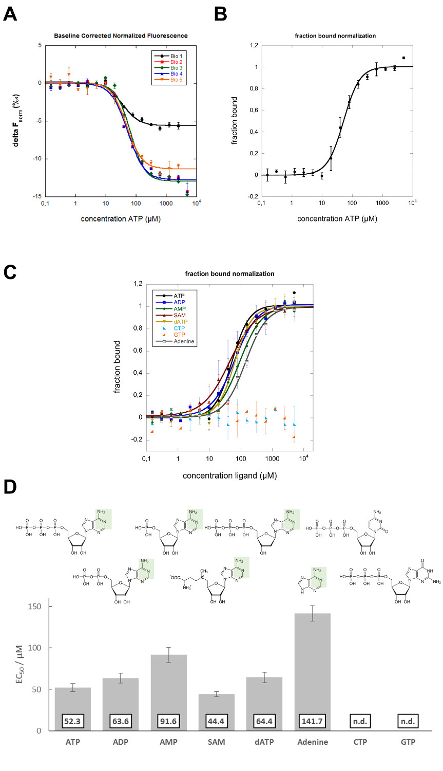 Mapping the Binding Site of an Aptamer on ATP Using MicroScale