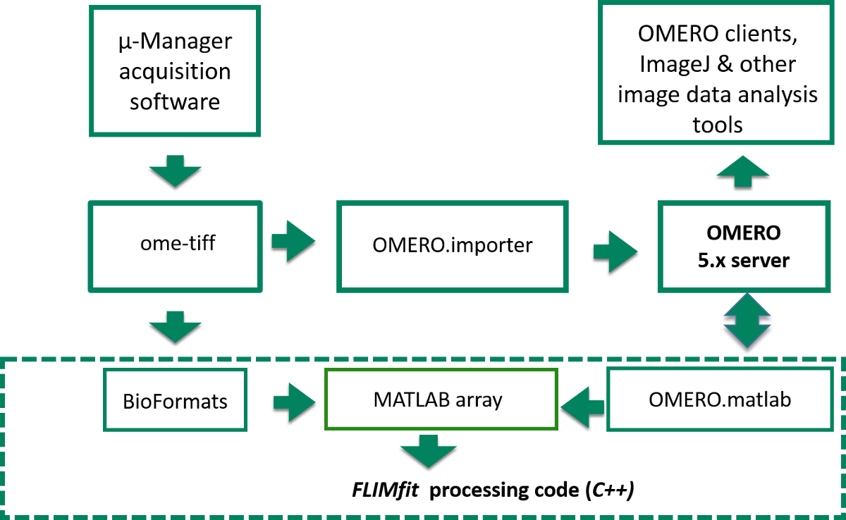 Open Source High Content Analysis Utilizing Automated Fluorescence