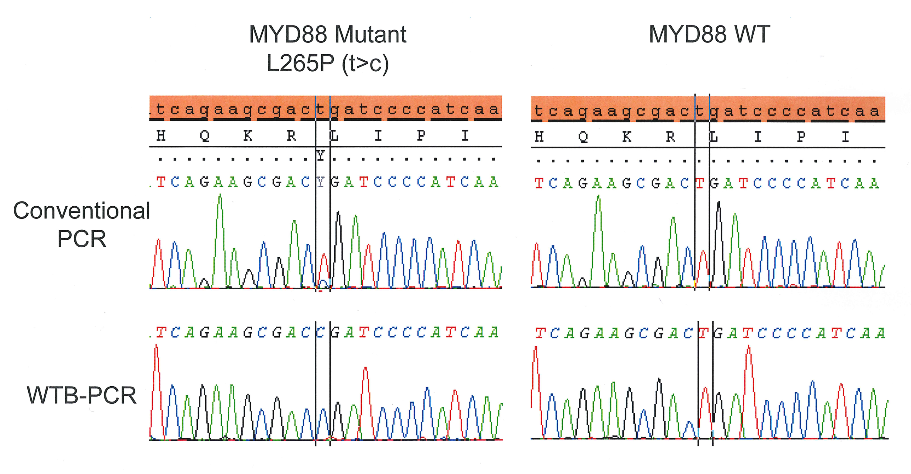 Wild-type Blocking PCR Combined with Direct Sequencing as a