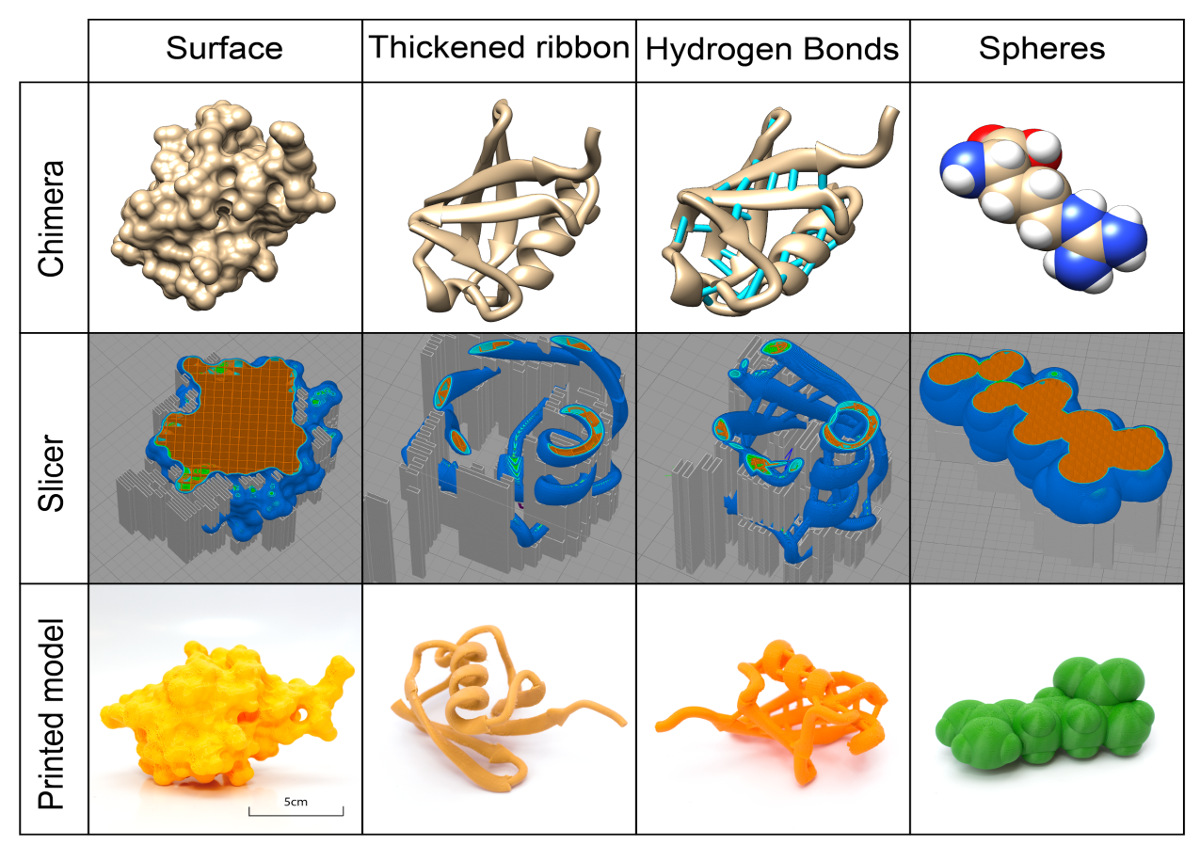 3D Printing of Biomolecular Models for Research and Pedagogy   Protocol