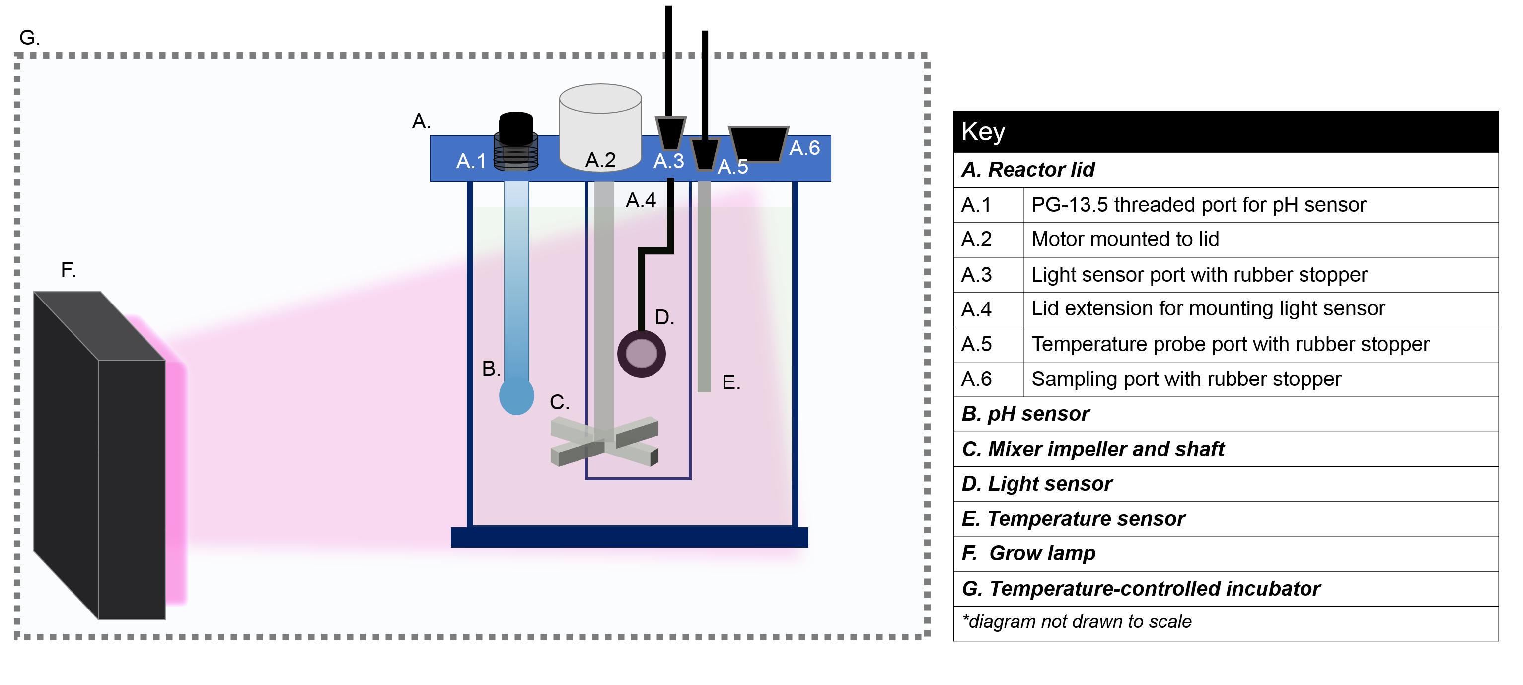 Ph Omega Wiring Diagram 15 - Wiring Diagrams List on