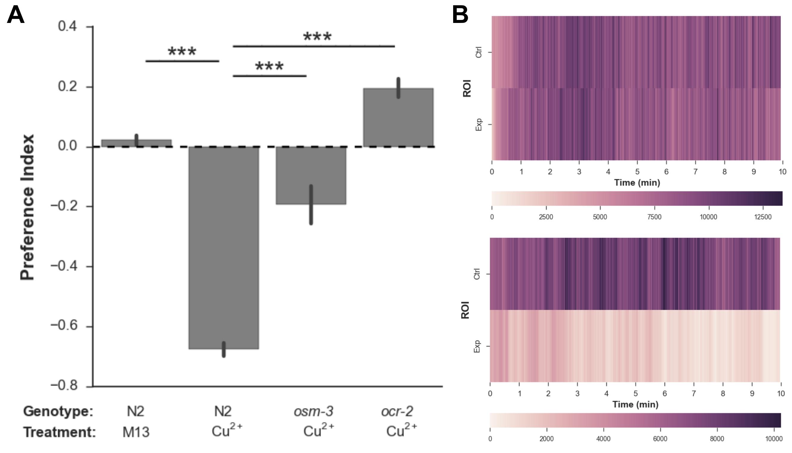 Automated Analysis of a Nematode Population-based