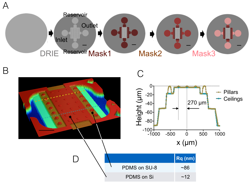 High-resolution Volume Imaging of Neurons by the Use of