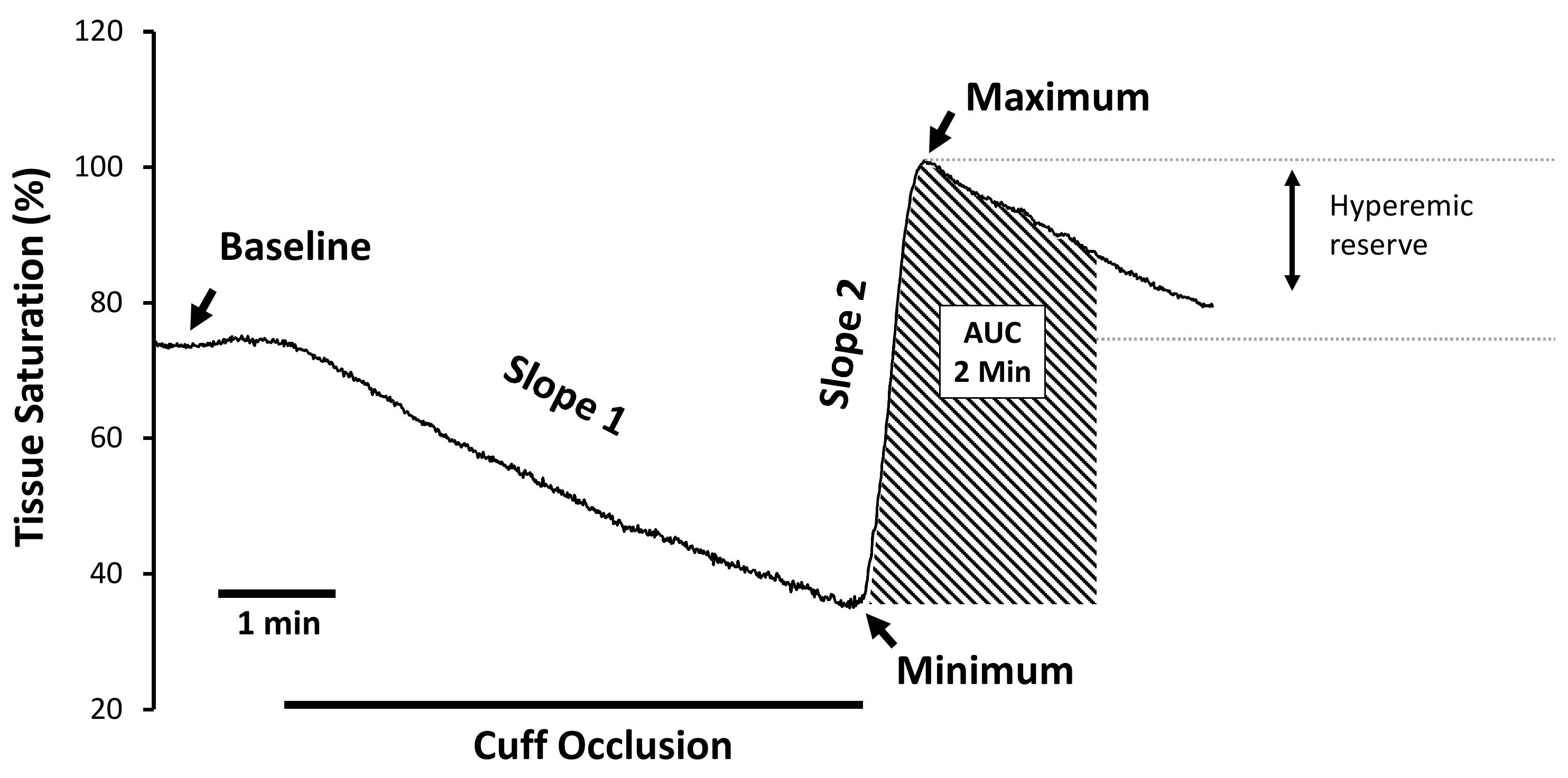 blodtryk alder kurve