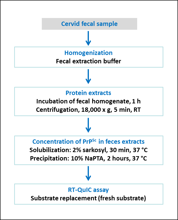 Real-time Quaking-induced Conversion Assay for Detection of CWD