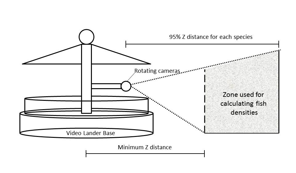 Development of New Methods for Quantifying Fish Density Using