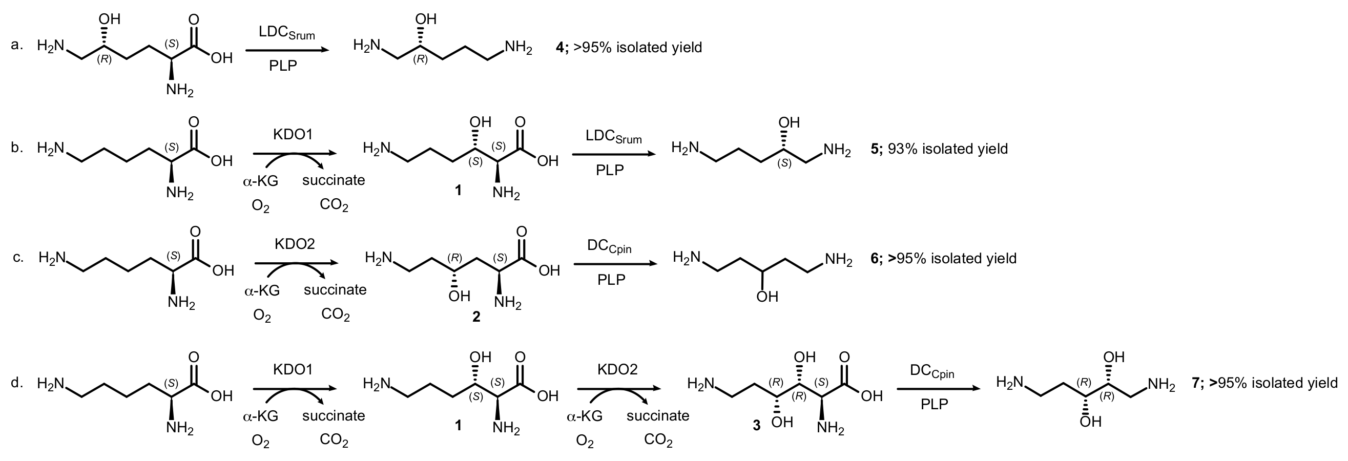 Enzymatic Cascade Reactions for the Synthesis of Chiral