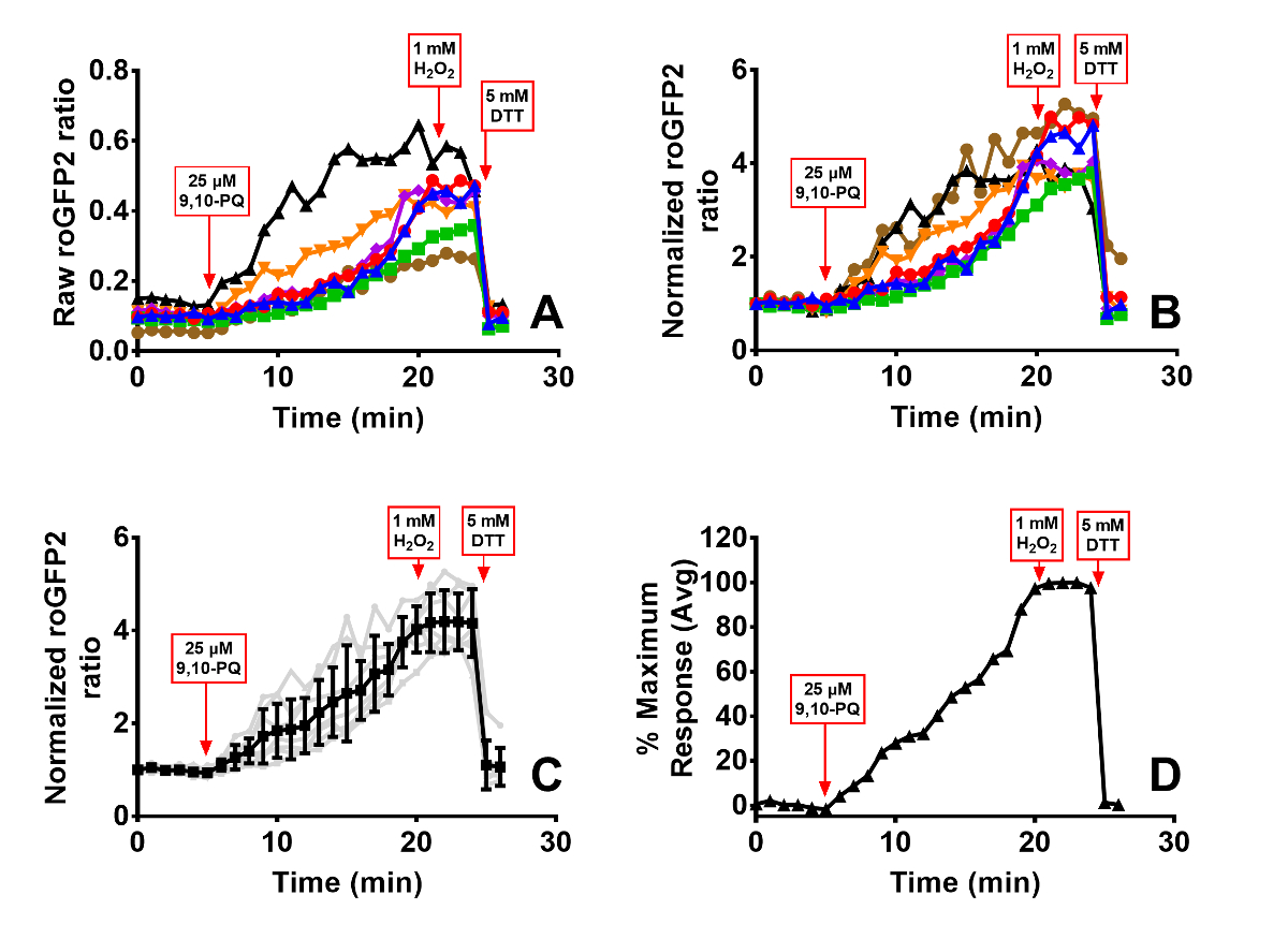 2d5c839fa Imaging Approaches to Assessments of Toxicological Oxidative Stress ...