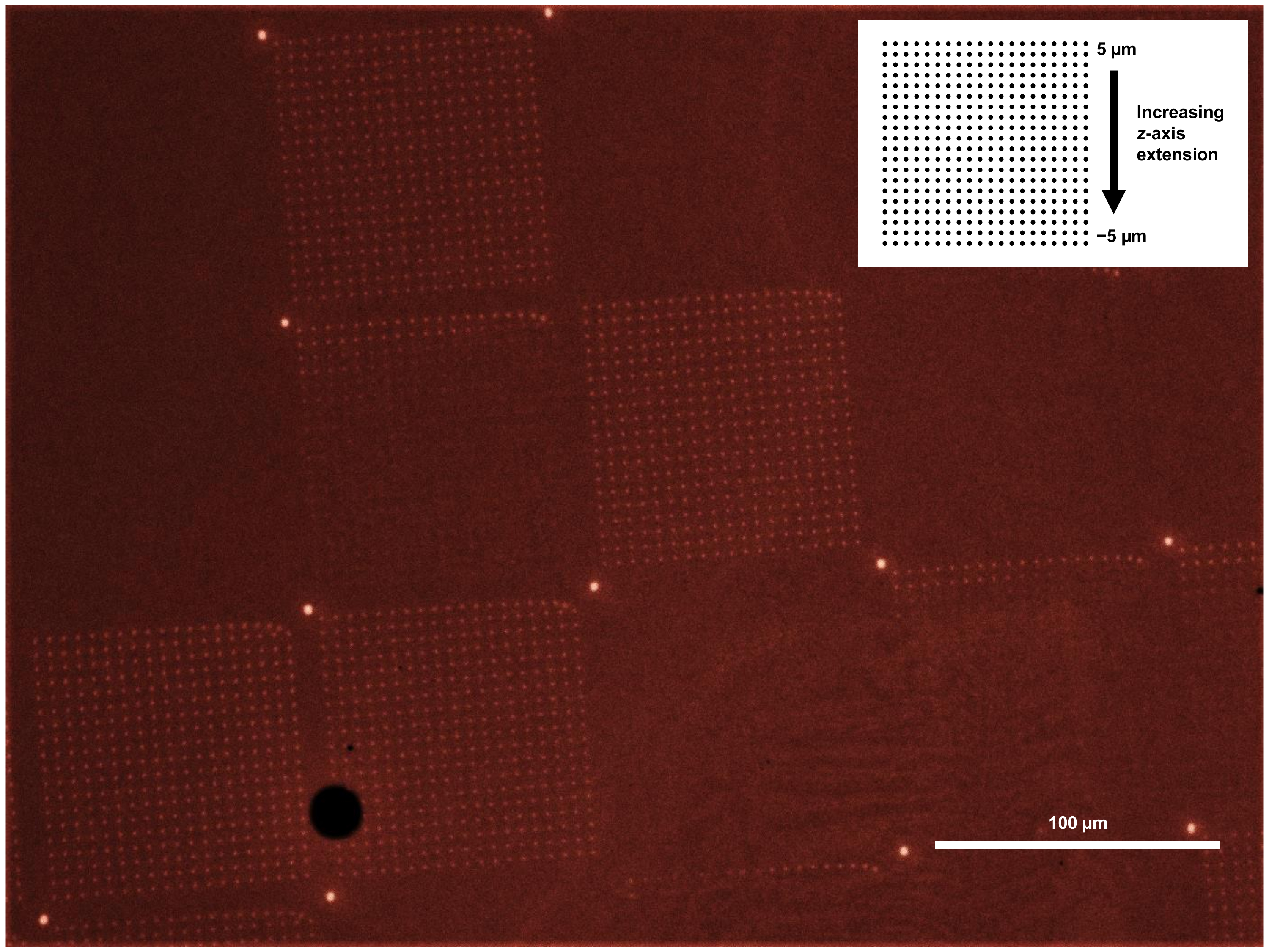 Large-area Scanning Probe Nanolithography Facilitated by
