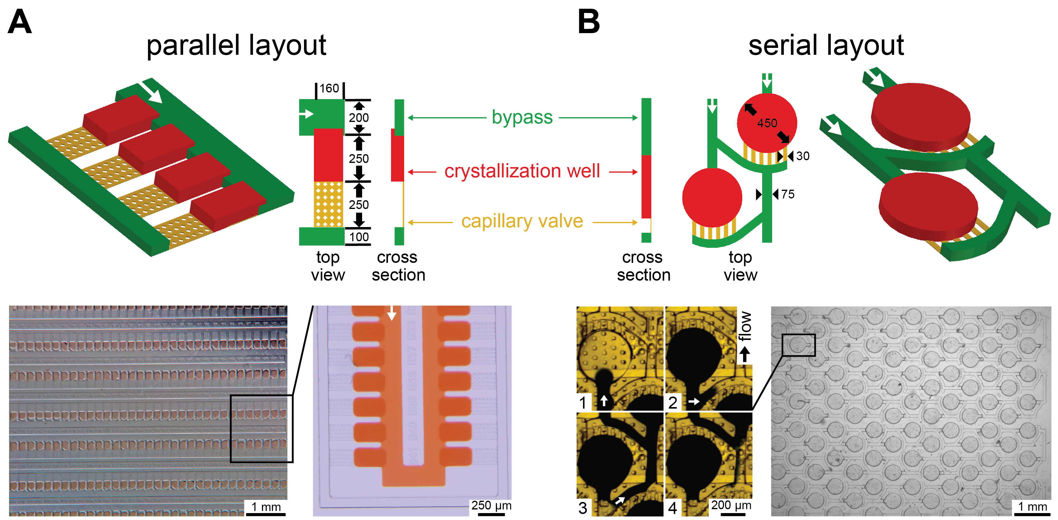 Microfluidic Chips for In Situ Crystal X-ray Diffraction and