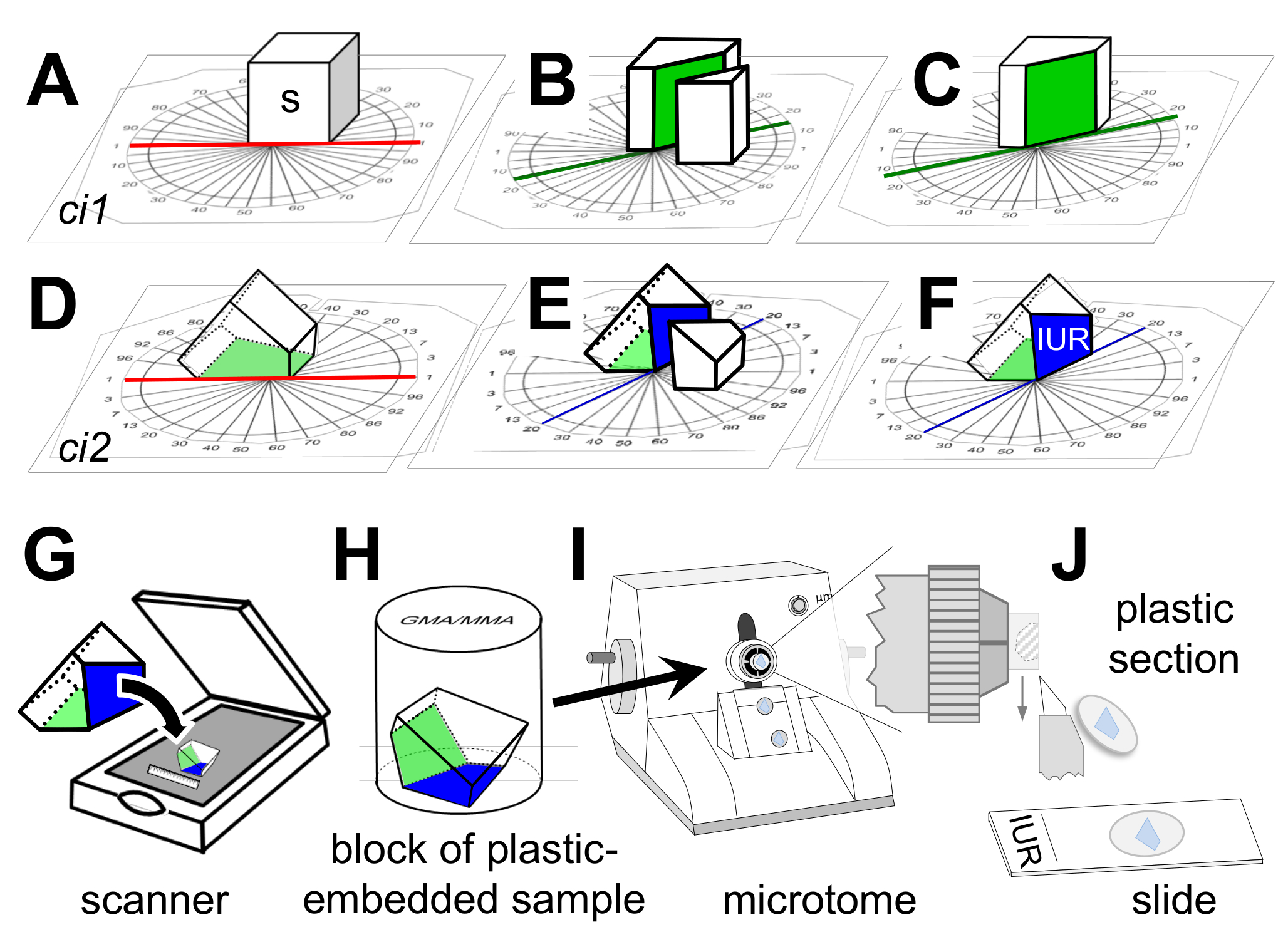 Sampling Strategies And Processing Of Biobank Tissue Samples From