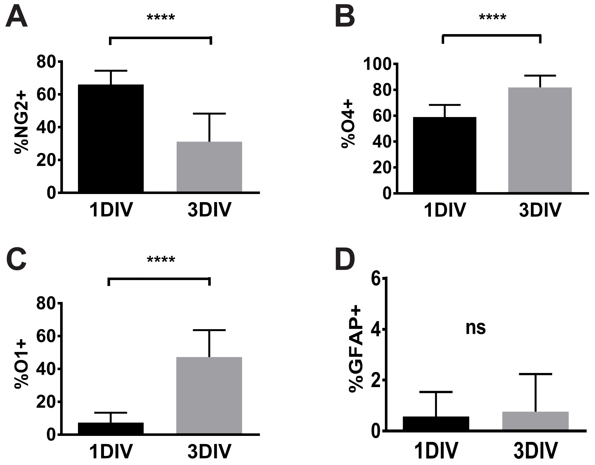 Rapid and Specific Immunomagnetic Isolation of Mouse Primary
