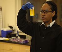 Water Quality Analysis via Indicator Organisms thumbnail