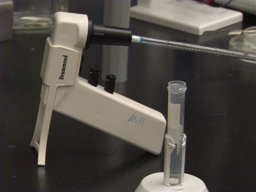 Introduction to Serological Pipettes and Pipettors thumbnail