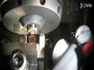 Electron Cryotomography of Bacterial Cells thumbnail
