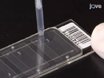 DNA Microarrays: Sample Quality Control, Array Hybridization and Scanning thumbnail