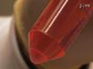 追跡調査のためのQdot ®二ナノとマウス骨髄由来樹状細胞の世代とラベリング thumbnail