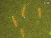Following Cell-fate in <em>E. coli</em> After Infection by Phage Lambda thumbnail