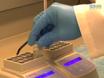 Responses imagem Neuronal em Preparações Slice of Organ Vomeronasal Expressando um sensor de cálcio geneticamente codificado thumbnail