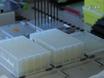 Quantitative and Automated High-throughput Genome-wide RNAi Screens in <em>C. elegans</em> thumbnail