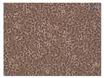 监测细胞自主的生物钟节律基因表达,利用荧光素酶生物发光记者 thumbnail