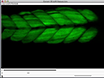 Sample Drift Correction Following 4D Confocal Time-lapse Imaging thumbnail