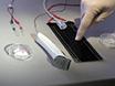 <em>In Vivo</em> Electrophysiological Measurements on Mouse Sciatic Nerves thumbnail