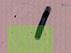Laser-induced Breakdown Spectroscopy: Een nieuwe aanpak voor de nanodeeltjes's Mapping en kwantificering in orgaanweefsel thumbnail