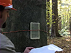A Technique to Screen American Beech for Resistance to the Beech Scale Insect (<em>Cryptococcus fagisuga</em> Lind.) thumbnail