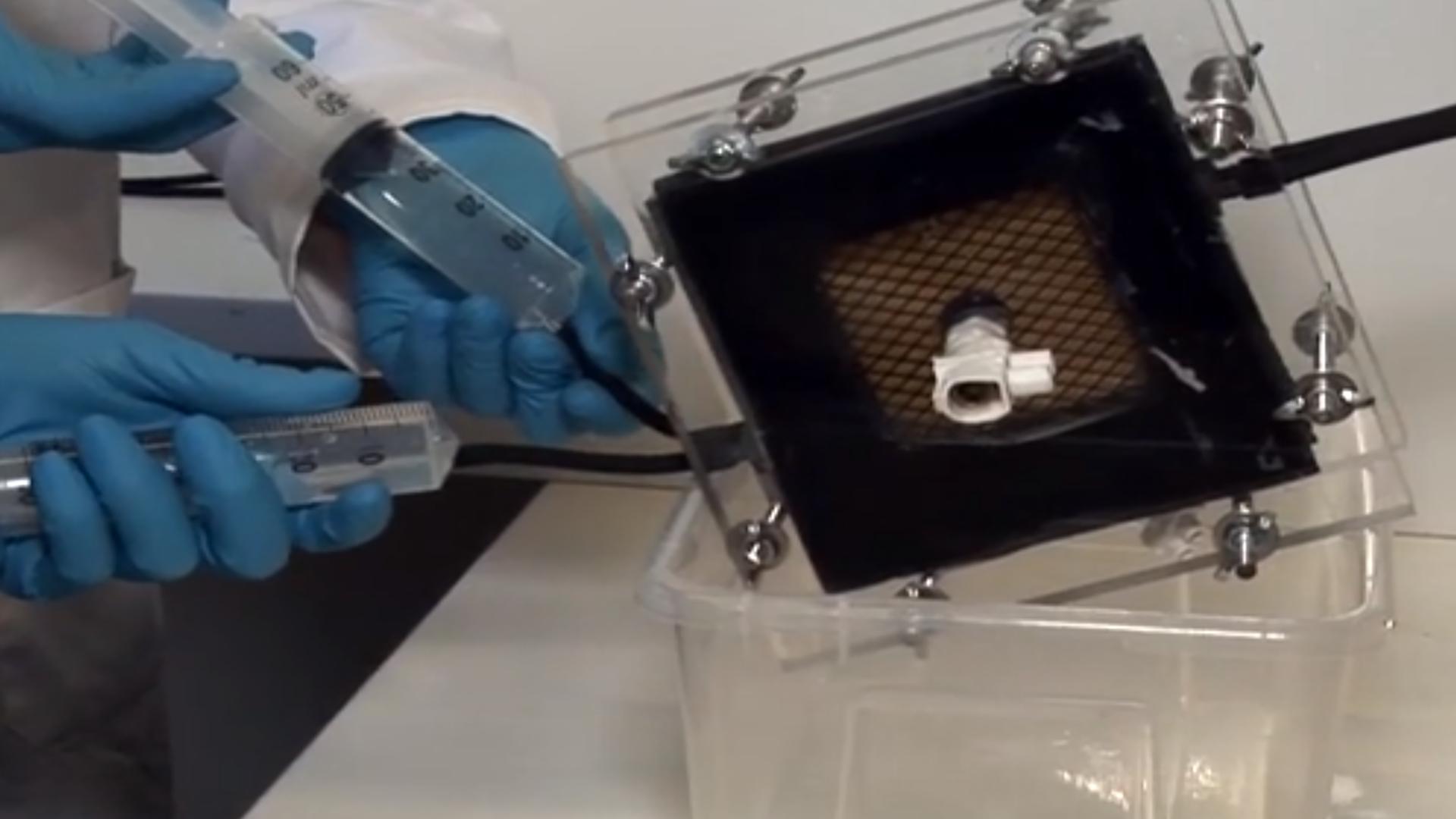 Elektrokimyasal ve Bioelectrochemically Kaynaklı Amonyum Kurtarma thumbnail