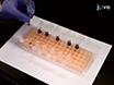 Sichtbares Licht induzierte Reduktion von Graphenoxid Mit Plasmonische Nanopartikel thumbnail