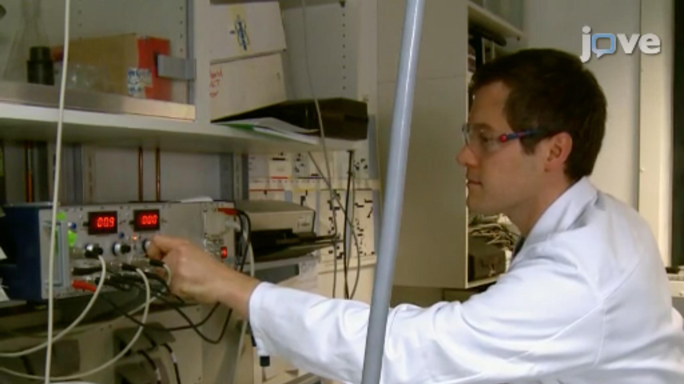Preparation of Carbon Nanosheets at Room Temperature thumbnail