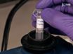 A Quantitative Glycomics and Proteomics Combined Purification Strategy thumbnail