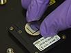 单壁碳纳米管与热可逆嵌段共聚物及表征功能化小角度中子散射 thumbnail