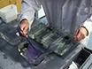 Ploidy Manipulation of Zebrafish Embryos with Heat Shock 2 Treatment thumbnail