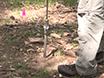 הערכת פחמן אורגני יציב בקרקע שימוש סדרתית פומיגציה ונהלי דגירה thumbnail