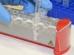 Mapping RNA-RNA Interactions Globally Using Biotinylated Psoralen thumbnail