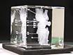 Scaled Modèle Anatomique Création d'étiquettes de données biomédicale tomographique Imaging et associés pour subsurface Gravure au laser ultérieure (SSLE) de cristaux de verre thumbnail