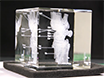 Scaled אנטומי דגם הבריאה של נתונים הדמיה טומוגרפית ביו Associated תוויות עבור תת-פני השטח לאחר חריטה בלייזר (SSLE) של קריסטלים זכוכית thumbnail