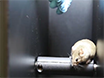 Battery of Behavioral Tests Assessing General Locomotion, Muscular Strength, and Coordination in Mice thumbnail