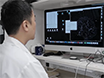 Highly Multiplexed, Super-resolution Imaging of T Cells Using madSTORM thumbnail