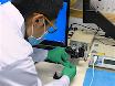 Laser Doppler: A Tool for Measuring Pancreatic Islet Microvascular Vasomotion <em>In Vivo</em> thumbnail