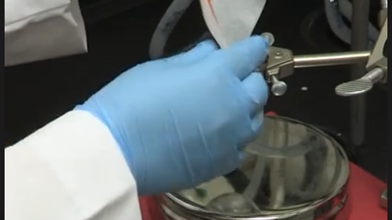 Nanosponge Tunability ב גודל וצפיפות Crosslinking thumbnail