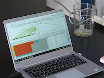 Phthalic Acid Ester-Binding DNA Aptamer Selection, Characterization, and Application to an Electrochemical Aptasensor thumbnail