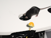 A Behavioral Assay for Investigating the Role of Spatial Memory During Instinctive Defense in Mice thumbnail