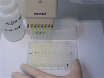 Titration ELISA as a Method to Determine the Dissociation Constant of Receptor Ligand Interaction thumbnail