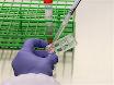Soruşturma 405 Nm lazer mikro-ile kullanarak DNA lezyonlar için Protein alımı thumbnail