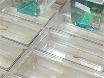 A Doxorubicin-induced Cardiomyopathy Model in Adult Zebrafish thumbnail