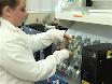 The TreadWheel: Interval Training Protocol for Gently Induced Exercise in <em>Drosophila melanogaster</em> thumbnail